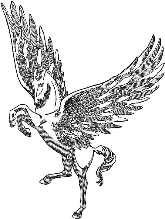 Free Printable Pegasus Coloring Pages For Kids | 720x544